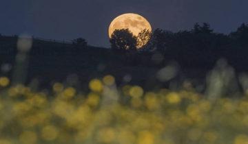 Pun mesec 28. juna