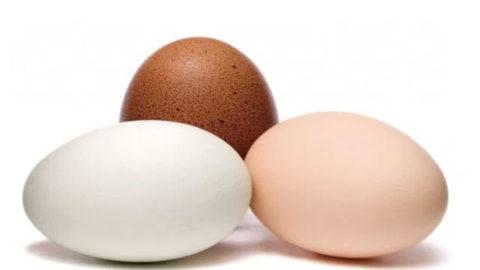 Izbeljivanje jaja